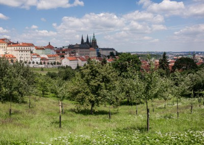 Strahov Orchard and Prague Castle
