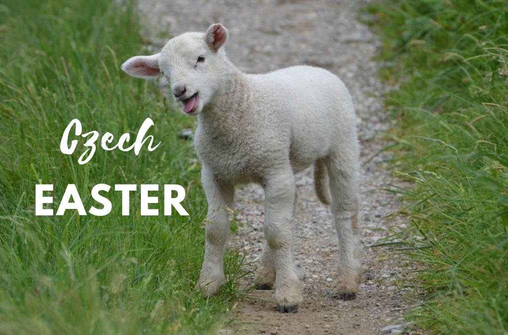 Czech Easter traditions: treats for whipping and pooping lamb