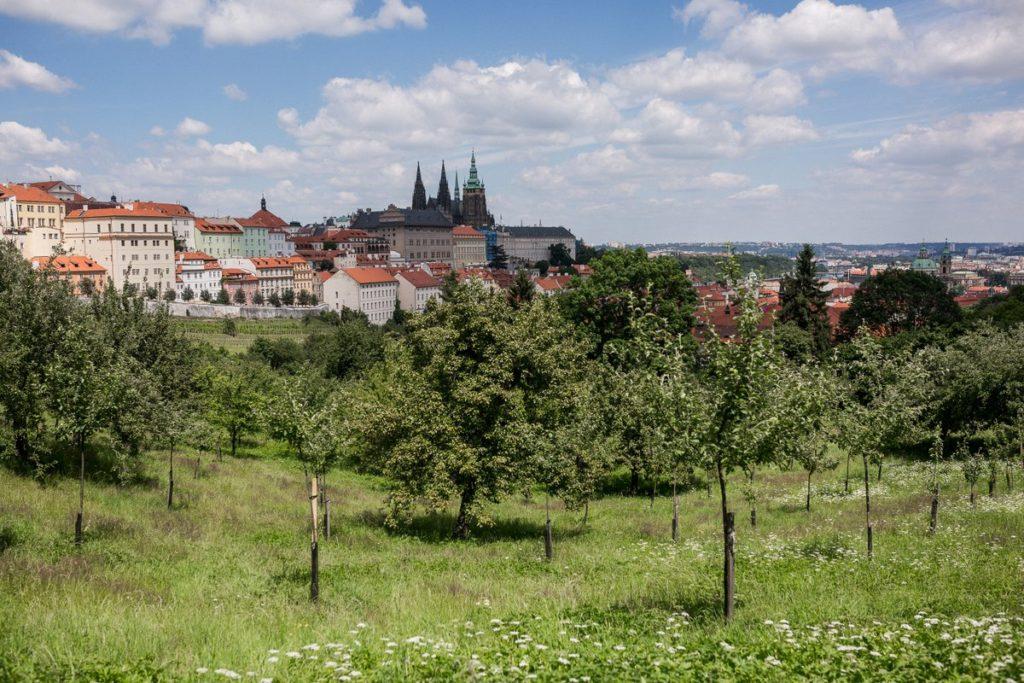 Prague small group tours